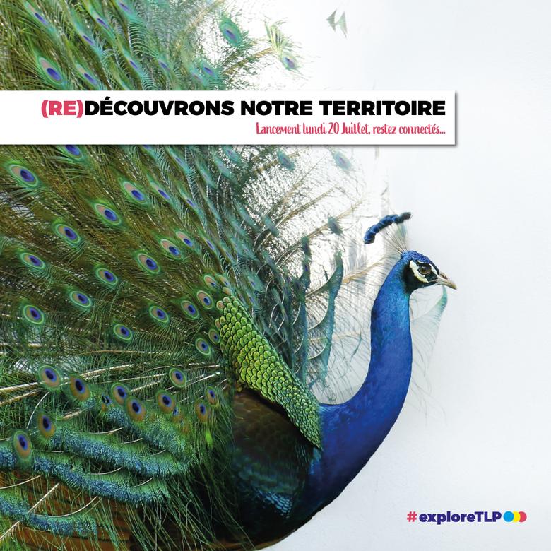 (RE)DÉCOUVRONS NOTRE TERRITOIRE