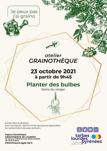 Atelier Grainothèque - Planter des bulbes